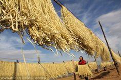 La antigua práctica de secar y conservar la comida (6)