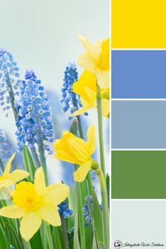 Scheme Color, Color Schemes Colour Palettes, Spring Color Palette, Warm Colour Palette, Blue Colour Palette, Spring Colors, Yellow Color Combinations, Room Color Combination, March Colors