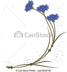 Cornflowers to use in wreath. This is a nice blue. Vectors of cornflower - vector background with flowers of the ...