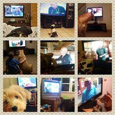 Pets watch Pol!