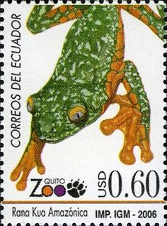 Stamps of Ecuador, Amphibians, Reptiles, Frog And Toad, Tree Frogs, Stamp Collecting, Postage Stamps, Ecuador, Froggy Stuff, Dinosaur Stuffed Animal