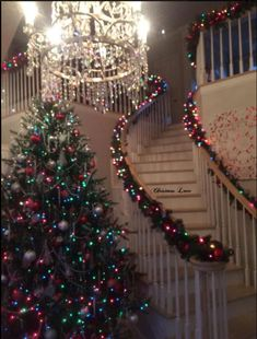 I would want to be in a ball gown when I entered this house, because I would be attending a Christmas party here! Christmas Staircase, Real Christmas Tree, Beautiful Christmas Trees, Christmas Scenes, Very Merry Christmas, Christmas Pictures, Winter Christmas, Christmas Lights, Stairway Christmas Decorating