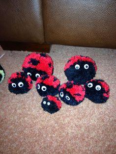 Pom pom ladybirds