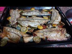 Fırında Palamut Pişirme Tarifi / palamut nasıl pişirilir 2