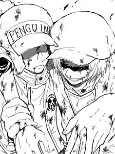 Shachi Penguin