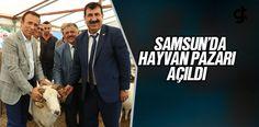 Samsun Canik'te Canlı Hayvan Pazarı Açıldı