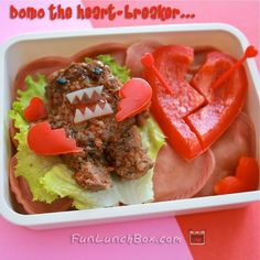 bento boxes for lunch