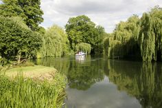 On the move - River Thames@Sonning. | Flickr - Photo Sharing!