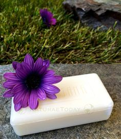 Ringana soap by NaturaeToday.com  nature green healthy lifestyle