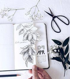 """Shayda Campbell auf Instagram: """"Ich denke, mein Lieblingspost der IG des Monat... -  Shayda Campbell auf Instagram: """"Ich denke, mein Lieblingspost der IG des Monats ist immer der, we - #AsianDecorations #auf #campbell #denke #der #des #FengShui #Ich #instagram #lieblingspost #LogHomes #mein #monat #shayda #WesternDecor"""