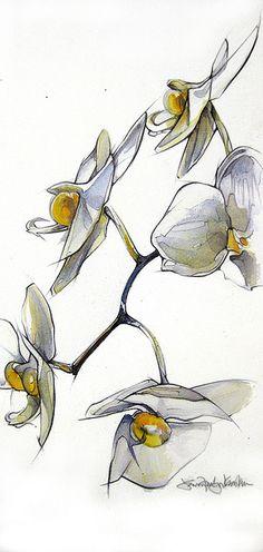 orchids by Jennifer Kraska, via Flickr