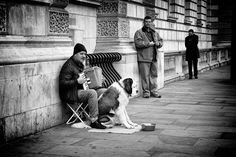 The accordionist and his saint bernard - Captured in RAW and post-processed in Lightroom CC (2015) and Photoshop Cc (2015) with Silver Efex Pro 2.  © Copyright: The reproduction, publication, modification, transmission or exploitation of any work contained herein for any use, personal or commercial, without my prior written permission is strictly prohibited.