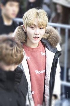 Seungkwan [승관] | Boo Seungkwan [부승관]
