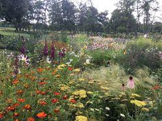 Jardín de Piet Oudolf en el Museo Voorlinden | El Blog de La Tabla