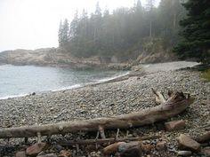 Forks Washington. I want to walk the shoreline here.