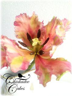 gumpaste parrot tulip...close-up