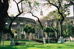 One of my favorite places in Guadalajara