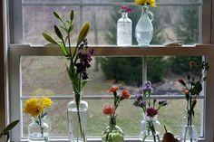 flowers in glass in the window