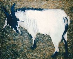"Billy Goat. Oil on Canvas. 30"" X 40"""