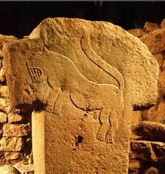 the stones at Gobekli Tepe have wonderfully expressive animal carvings. the biggest mystery of the site is why, after such immense undertaking, the buildings were abandoned and deliberately buried.