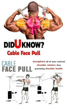 🔥 Did you know Cable Face Pull 🚨 Exercise details Target muscle: Posterior Deltoid Synergists: Infraspinatus, Teres Minor, Lateral Deltoid, Middle and Lower Traps Workout, Gym Workout Tips, Weight Training Workouts, Workout Fitness, Ripped Workout, Face Pull Exercise, Diet Exercise, Cable Workout, Face Pulls