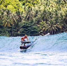 Log surfing, surf, waves, ocean, sea, water, swell, surf culture, island, beach, salt life, #surfing #surf #waves