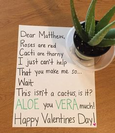 Find the perfect Valentine's Day gift! Shop Valentine's Day gifts for her, gifts for him, kid's valentines and even gifts for your Galentine. Get unique gift ideas and shop Valentine's Day favorites like chocolates, flowers, jewelry and cards. Diy Valentines Gifts For Him, Be My Valentine, Valentines Day Jokes, Funny Valentine Poems, Valentine Roses, Red Cactus, Cactus Pun, Valentines Bricolage, My Sun And Stars