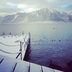 Montreux's lakeshore  #snow #montreux Switzerland, Places Ive Been, Snow, Autumn, Mountains, Photo And Video, Winter, Holiday, Nature