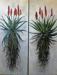 Christelle Pretorius Art, oil on canvas, Aloes Protea Art, Cactus Painting, Plant Painting, Painting Flowers, Gouache Painting, Botanical Drawings, Botanical Art, Art Floral, List Of Paintings