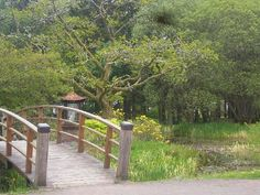 Gardens at Kagyu Samye Ling, Scotland