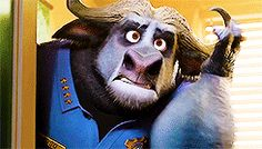 When someone says something that shows their stupidity Zootopia Gif, Zootopia 2016, Disney And Dreamworks, Disney Pixar, Disney Characters, Fictional Characters, Zootopia Chief Bogo, Judy Hopps, Childhood Movies