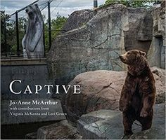 """BREATHTAKING, MOURNFUL, VITAL"" (Andrew Westoll) Captive is about animals who live their lives on display and yet who are so rarely truly seen. Captive seeks to reveal the experiences of animals in zoos and aquaria around the world. I'm looking at the experience of individual animals in captivity. The images ask the question: is this really worth it?"