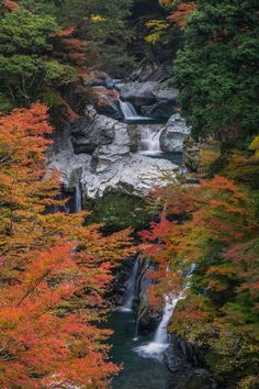 Ootodoro waterfall, Tokushima, Japan Sea Of Japan, Go To Japan, Top Places To Travel, Japan Tourism, Tokushima, Japan Landscape, Japan Travel Tips, One With Nature, Green Earth
