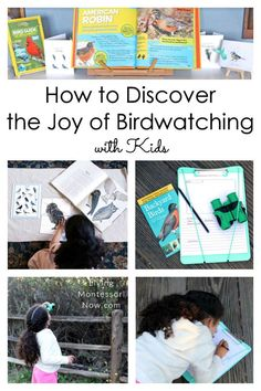 How to Discover the Joy of Birdwatching with Kids Resources for discovering the joy of birdwatching for multiple ages; Montessori bird resources that are perfect for home or classroom; great for a bird unit - Living Montessori Now Montessori Practical Life, Montessori Homeschool, Montessori Classroom, Montessori Toddler, Montessori Activities, Spring Activities, Hands On Activities, Preschool Themes, Preschool Kindergarten