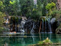 Quiet Forest Waterfall HD Wallpaper on MobDecor http://www.mobdecor.com/b2b/wallpaper/222667-quiet-forest-waterfall