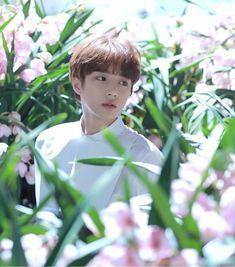 txt's beomgyu (bighit's new kpop group tomorrow x together) Daegu, K Pop, Gyu, The Dream, What Do You See, Yoongi, Handsome Boys, Kpop Groups, K Idols