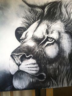 Lion head study by jaffer