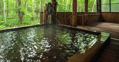 北海道 川湯温泉 名湯の森ホテル「きたふくろう」硫黄の源泉かけ流し露天風呂
