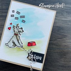 #tgifc313 Dog Cat Theme Challenge Pampered Pets by Stampin' Up! Card created by Stesha Bloodhart, Stampin' Hoot! 2 Toot, Special Promotion, Stampin Up, Dog Cat, Card Making, Challenges, Paper Crafts, Learning, Pets