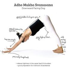 yoga yoga school and yoga poses on pinterest