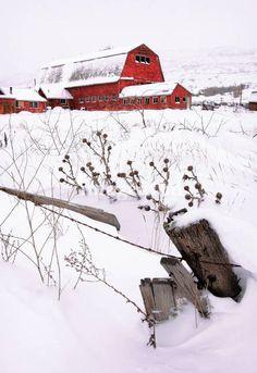 """Winter Barn III"" by David Kocherhans"