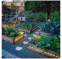Backyard Vegetable Gardens, Potager Garden, Vegetable Garden Design, Indoor Garden, Outdoor Gardens, Balcony Garden, Garden Bar, Easy Garden, Kitchen Garden Ideas