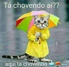 Mensagens Para Seus Dias De Chuva Com Imagens Bom Dia De Chuva