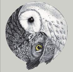 owl ying-yang for side tatoo Great Tattoos, Beautiful Tattoos, Buho Tattoo, Hipster Vintage, Vintage Owl, Geniale Tattoos, Tatoo Art, Owl Art, Future Tattoos