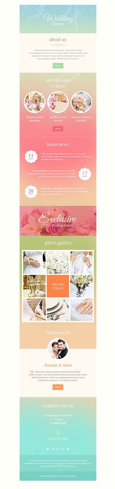 Template   Party Planner Newsletter Template  Newsletter