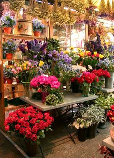 Amsterdam flower market • by zyn₪p via Flickr