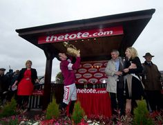 Go Davy! Irish Racing, Horse Racing Tips, Racing News, Gold Cup, Punchestown Festival, Champs, Equestrian, This Is Us, Horses