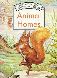 Animal Homes by Beatrix Potter very good used condition illustrated board book Rabbit Tale, Board Book, Social Enterprise, Beatrix Potter, Animal House, Picture Books, Nursery Rhymes, Good Books, Conditioner