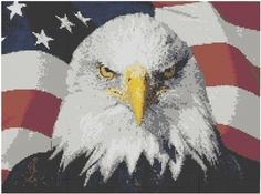 American Eagle Cross Stitch Kit by jpcrossstitch on Etsy, $14.95