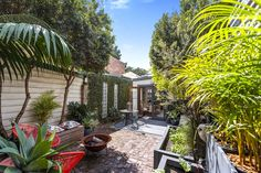 James Pratt Auction Group, Auction in Sydney. #garden #home #house #tree #outdoor #outdoorliving #exterior #landscape #realestate #jamespratt #realty